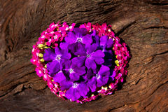 Sweet small blossoms in pink and lilac on wood. Sweet small blossoms in pink and lilac on wood, a hopeful summer decoration Stock Photo