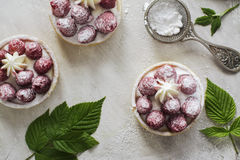 Sweet small tarts with fresh raspberry. Sweet small french tarts with fresh raspberry and cream over vintage stone table Royalty Free Stock Photography