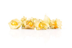 Sweet and sour physalis fruits in opened shell on background. Royalty Free Stock Photo