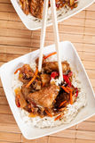 Sweet and sour pork and rice Stock Images