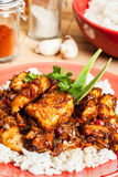 Sweet and sour pork and rice Royalty Free Stock Images