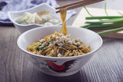 Sweet Soy Sauce Glazed Chicken Noodle. With green onion and celery in a bowl Royalty Free Stock Photography