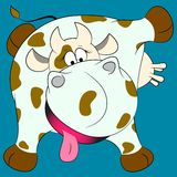Sweet spotted cow Royalty Free Stock Photos