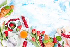 Sweet spring breakfast with croissants and bacon on a light background. A bouquet of red tulips and fresh berries of strawberries. And currants. The concept of royalty free stock images