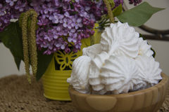 Sweet spring meringues Royalty Free Stock Photography