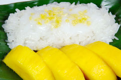 Sweet sticky rice with mango, Thai dessert. Stock Photography