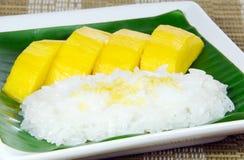 Sweet sticky rice with mango, Thai dessert. Stock Photos