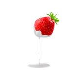 Sweet Strawberries Stock Photography