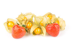 Sweet strawberries with green leaves and yellow golden physalios. Royalty Free Stock Images