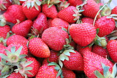 Sweet    strawberries Royalty Free Stock Photos