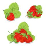 Sweet strawberries on a white background Stock Images