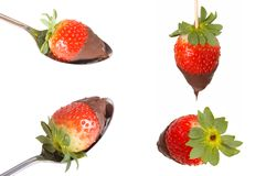 Sweet strawberry. Four pictures off strawberries with chocolate put together Stock Photo