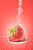 Sweet strawberry Stock Photos
