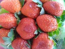Strawberries background stock photos