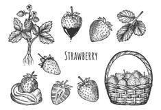 Free Sweet Strawberry Dessert Set Stock Photo - 176790370