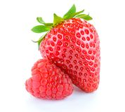 Sweet Strawberry and Juicy Raspberry Isolated on the White Background Royalty Free Stock Image