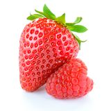 Sweet Strawberry and Juicy Raspberry  on White Background. Summer Healthy Food Concept. Sweet Strawberry and Juicy Raspberry  on the White Background. Summer Royalty Free Stock Photos