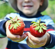 Sweet strawberry Stock Images