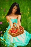 Sweet strawberry in woman hands Royalty Free Stock Photography