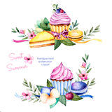 Sweet summer collection with flowers,leaves,succulent plant,branches,pansy flower,macaroons,lemon cheesecake and cupcakes. Stock Image