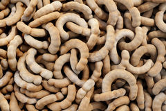 Sweet tamarind Stock Images