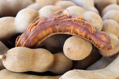 Sweet tamarind Stock Photography
