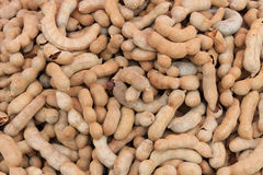 Sweet tamarind for sale on a market Stock Photography