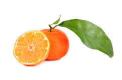 Sweet tangerines Stock Image