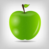 Sweet tasty apple vector illustration Stock Image