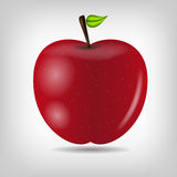Sweet tasty apple vector illustration Royalty Free Stock Photography