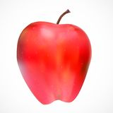 Sweet Tasty Apple Vector Illustration. Royalty Free Stock Image