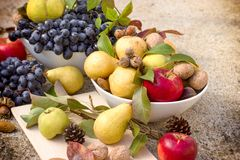 Sweet and tasty autumn organic fruits Stock Image