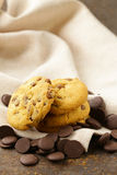 Sweet tasty cookies with chocolate chips Stock Image