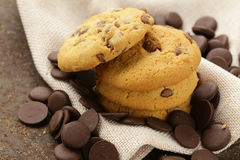 Sweet tasty cookies with chocolate chips Royalty Free Stock Image
