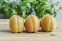 Peaches. Sweet, tasty and fresh peaches Royalty Free Stock Photography