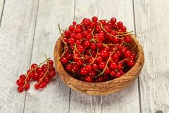 Sweet tasty fresh Red currant. Berries royalty free stock photo