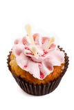 Sweet tasty homemade cupcake with strawberry cream isolated Stock Image