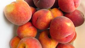 Sweet Tasty Ripe Peach Fruits. Natural Peach Harvest. Healthy Fruit. Natural Healthy Food. Organic gardening stock photography