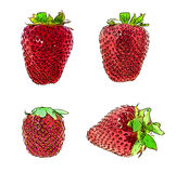 Sweet Tasty Strawberry. Vector Illustration. EPS10 Royalty Free Stock Photos