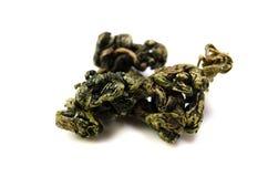 Sweet tea vine Royalty Free Stock Image