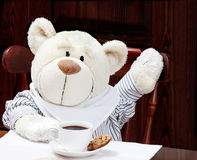 Sweet Teddy Bear With Cup of Coffee, Hot Chocolate or tea and Co Royalty Free Stock Photography