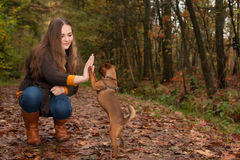 Sweet Teenager And Her Dog Royalty Free Stock Images