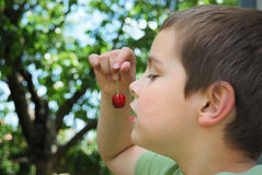 Sweet temptation. Boy holding a bing cherry in his hand in the front of his mouth like a sweet temptation royalty free stock photos