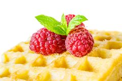 Sweet toast waffles breakfast with raspberries and with sprig of mint leaves macro close-up isolated. On white background Stock Photography