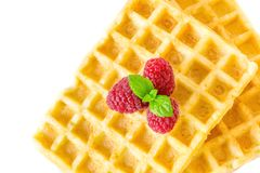 Sweet toast waffles breakfast with raspberries and with sprig of mint leaves macro close-up isolated Stock Images