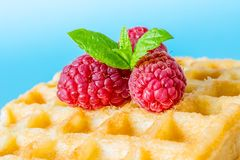 Sweet toast waffles breakfast with raspberries and with sprig of mint leaves macro. Close-up on blue background Royalty Free Stock Photos
