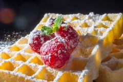 Sweet toast waffles with raspberries and a sprig of mint leaves and sugar powder in the sunlight close-up. Sweet toast waffles with raspberries and a sprig of Royalty Free Stock Photos