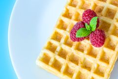 Sweet toast waffles with raspberries and a sprig of mint leaves on a white plate close-up macro on a blue background. Stock Images