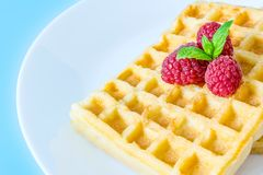 Sweet toast waffles with raspberries and a sprig of mint leaves on a white plate close-up macro Royalty Free Stock Images