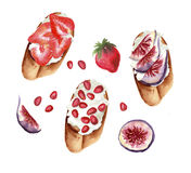 Sweet toasts set with fruits and cream cheese. Sweet toasts set with fruits: strawberry, pomegranate and figs on white cream cheese, watercolor habd painted royalty free illustration